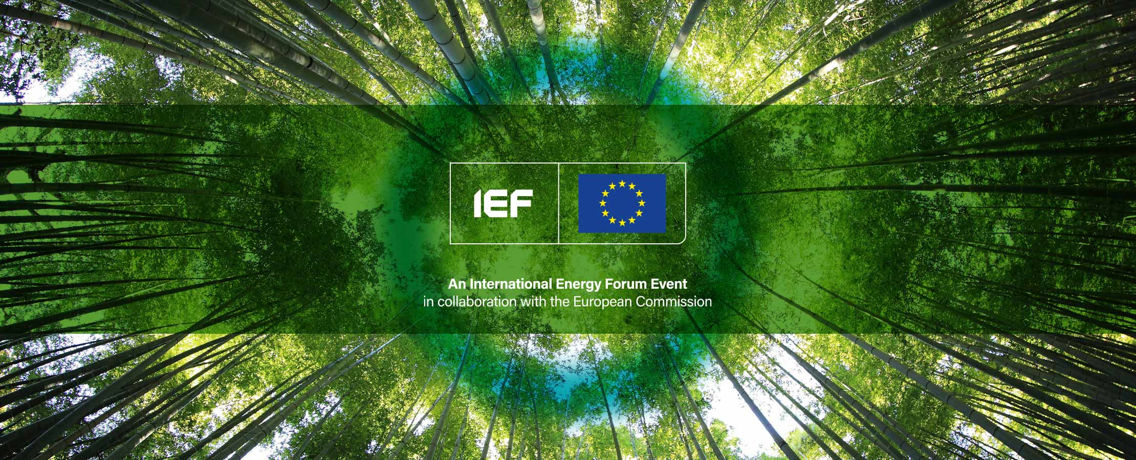 5th IEF-EU Energy and Climate Day