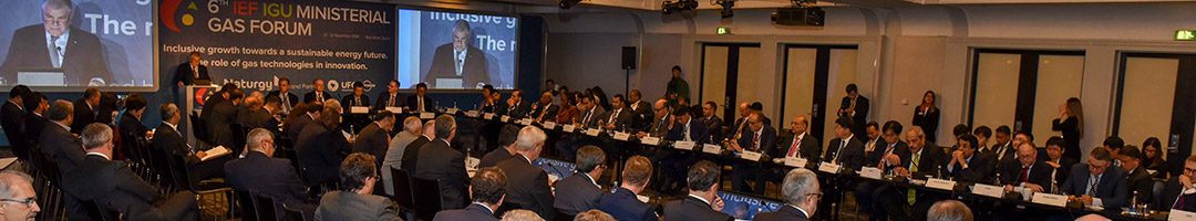 Audience and Panel at 6th IEF IGU Ministerial