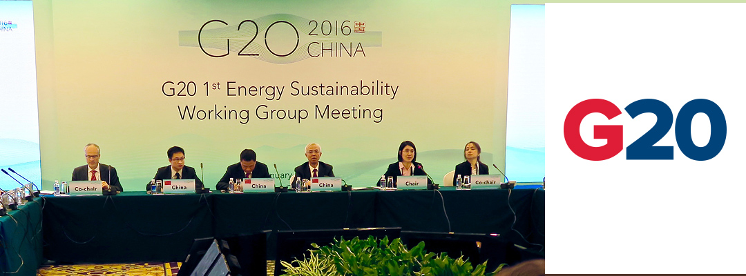 G20-Energy-Ministers_29-Jan-2016
