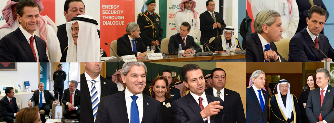 Mexico Energy Day
